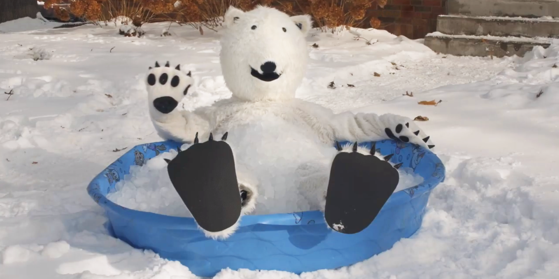 Snowflake chills in a kiddie pool